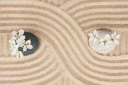 Black And White Stone With Flowers On The Sand